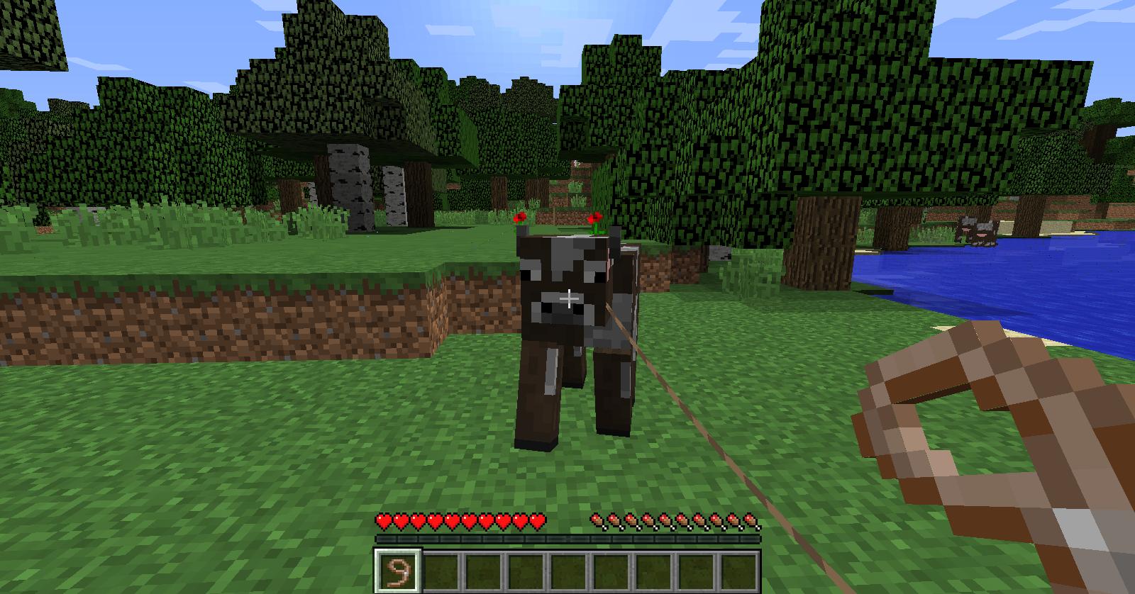 Minecraft duplication de laisse - Comment faire une laisse dans minecraft ...