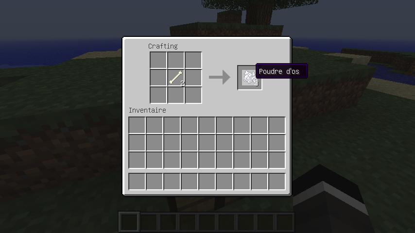 Comment avoir des os dans minecraft - Comment faire un evier dans minecraft ...