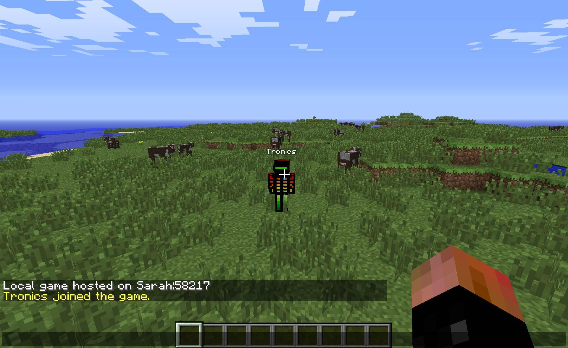 <b>Minecraft</b> en mode <b>multijoueur</b> : le serveur Epicube <b>Minecraft</b>