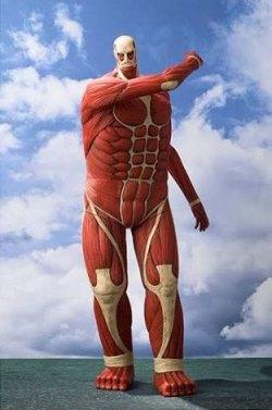 Bertholdt's Colossal Titan - Shingeki no Kyojin Minecraft Skin